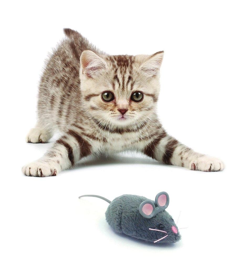 """Микроробот Hexbug """"Мышка Грей"""" фото"""